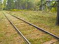 Bronnaya Gora place of execution 1g.jpg