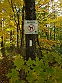 Bruce Trail - No Dogs sign (20181020).jpg