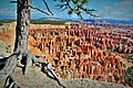 Bryce Canyon Inspiration Point 3.jpg