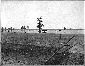 Caddo Lake - Image: Bulletin 429 Plate X A Caddo Lake