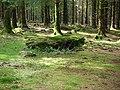 Burial Chamber - geograph.org.uk - 156861.jpg