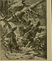 Buzzacott's masterpiece; (1913) (20324291658).jpg