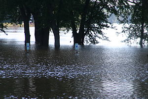 2007 Midwest flooding - The Rock River poured into this riverside park in Byron, Illinois on August 24–25.