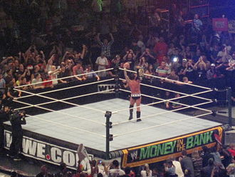 Money in the Bank (2011) - After his win in the main event, CM Punk celebrated with the WWE Championship.