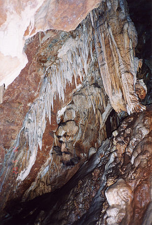 Mercer Caverns - Image: California Murphys Mercer cave 1