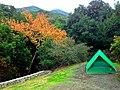 Camping - panoramio (9).jpg