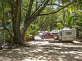Camping Daintree National Parc Nationalpark (22533827153).jpg