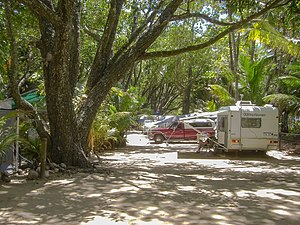 Daintree Rainforest - Camping at Daintree National Park 2009