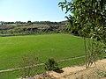 Campo Piedade de Cima parcial VI. - panoramio.jpg