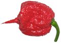 Carolina Reaper Pepper.png