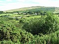 Cashel Townland - geograph.org.uk - 1380089.jpg