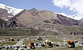 Caucasus Hammond Slides GMR 19.jpg