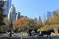 Central Park South - panoramio (12).jpg