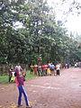 Century Club Onaghosham, Choorakkattukara IMG 8762.JPG