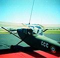 Cessna 0-1 Bird Dog French Army.jpg