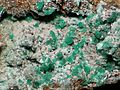 Chalcanthite-111331.jpg