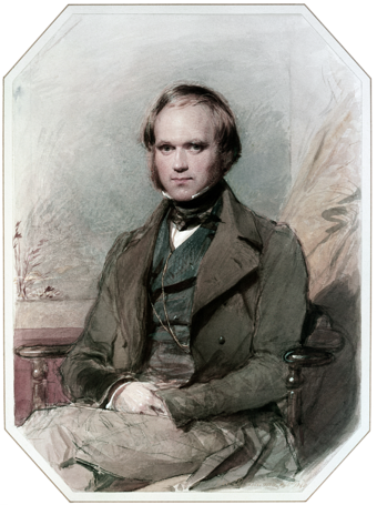 English naturalist and geologist Charles Darwin Charles Darwin by G. Richmond.png