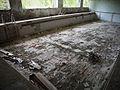 Chernobyl and Pripyat (4853742775).jpg