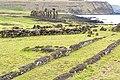 Chile-03132 - Hare Paenga (49072484468).jpg