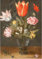 Christoffel van den Berghe - Still Life with Tulips and Carnations in a Glass Vase.tiff