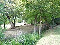 Cierzac, picnic area.jpg