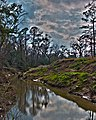 Clear Creek HDR (6717354485).jpg