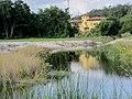 Clearwater, FL, USA - panoramio.jpg