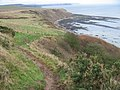 Cleveland Way above Gristhorpe Cliff - geograph.org.uk - 660010.jpg