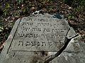 Cmentarz żydowski w Lipsku (województwo mazowieckie).jpg