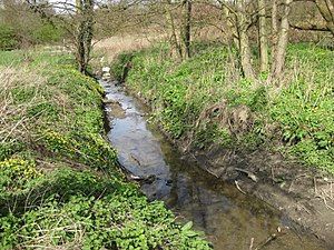Swarcliffe - Cock Beck going north from Barwick Road