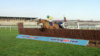 Newbury Racecourse - Cois Farraig jumps the last in front at Newbury