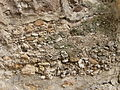 Conglomerate.2492.JPG