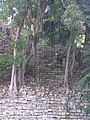 Copan Ruins - panoramio (1).jpg