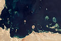 Coral Reefs in the Persian Gulf.jpg