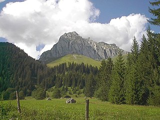 La Chapelle-dAbondance Commune in Auvergne-Rhône-Alpes, France