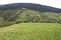 Crestaulta Plateau.jpg