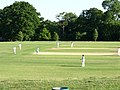 Cricket match in progress. - geograph.org.uk - 1318249.jpg
