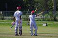 Cricketer0001.jpg