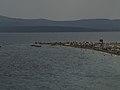 Croatia P8155034raw (3942211551).jpg
