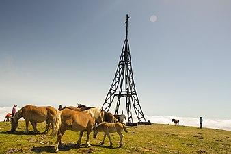 Cruz del Gorbea y caballos.jpg