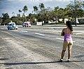 Cuba libre (6941397089).jpg