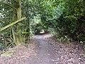 Cut Lane - geograph.org.uk - 1750148.jpg