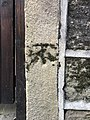 Cut Mark at Colne, 26 and 28 Duke Street Wall Division.jpg