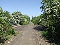 Cycle route on the old railway - geograph.org.uk - 1873108.jpg