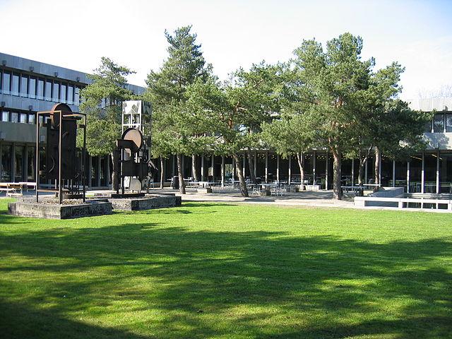 Английский язык постепенно вытесняет датский в университетах Дании