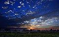 Daan Forst Park (大安森林公園音樂台夕陽) - panoramio.jpg