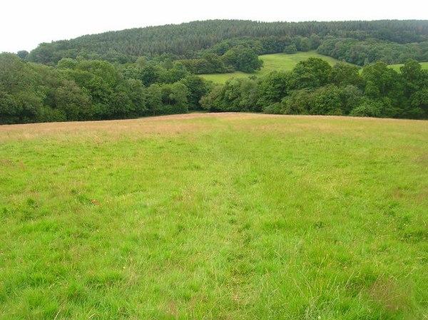 Dallington United Kingdom  City pictures : dallington forest dallington forest is a 16 2 hectare 40 0 acre ...