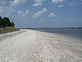 Daufuskie Island - shell beach 2.jpg