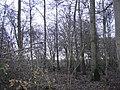 Delft - 2009 - panoramio - StevenL (16).jpg