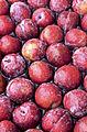 Delicious Fruit (3987244735).jpg